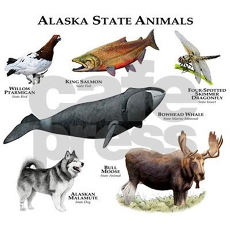 Alaska clipart animal alaska. State animals framed tile