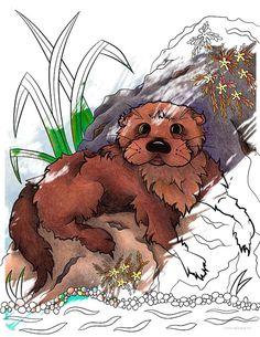 Grizzly bear free clip. Alaska clipart color