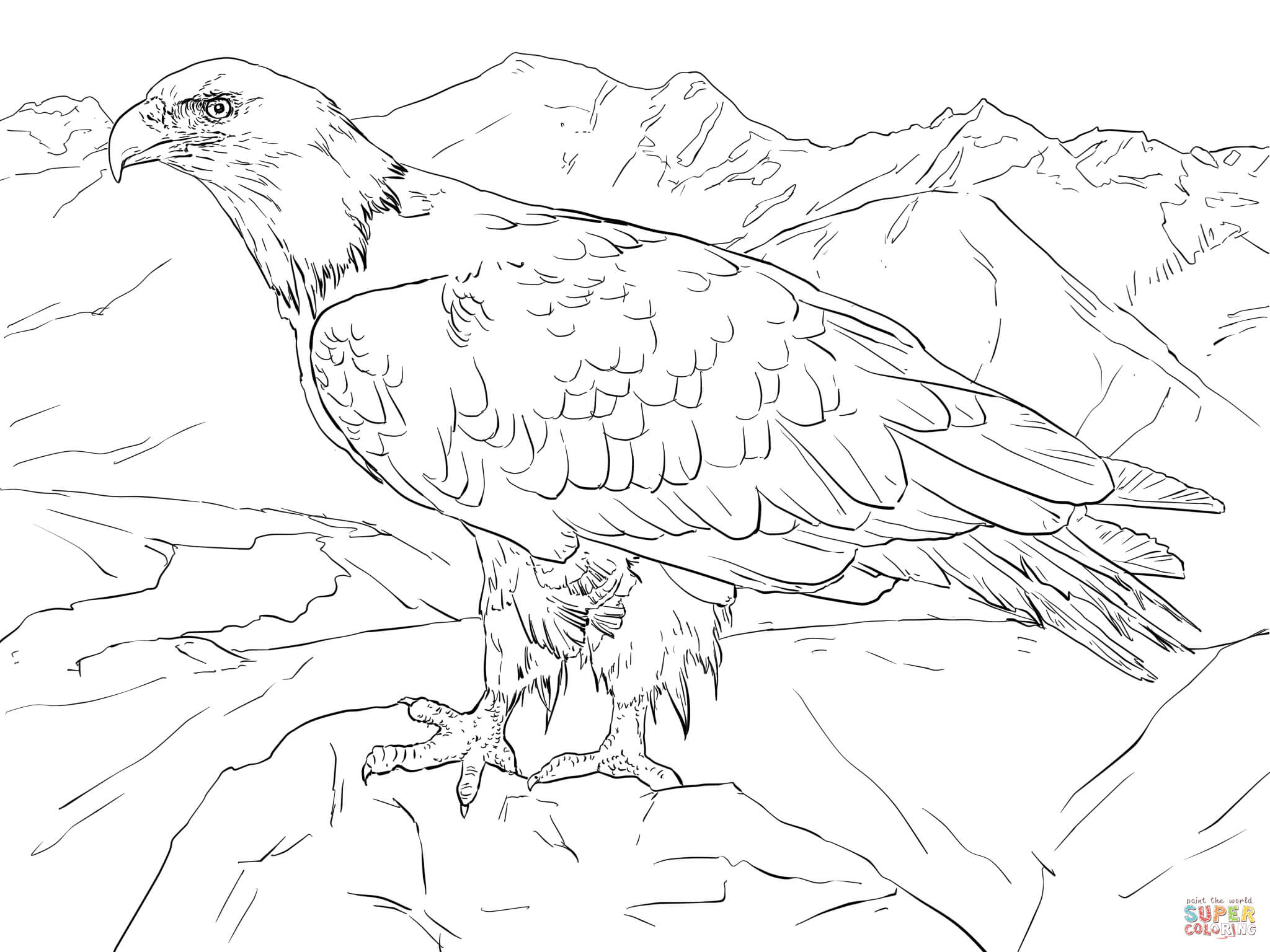 Alaska clipart coloring page. Bald eagle from free