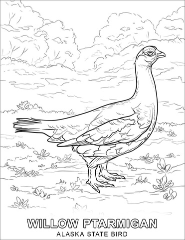 State bird free printable. Alaska clipart coloring page