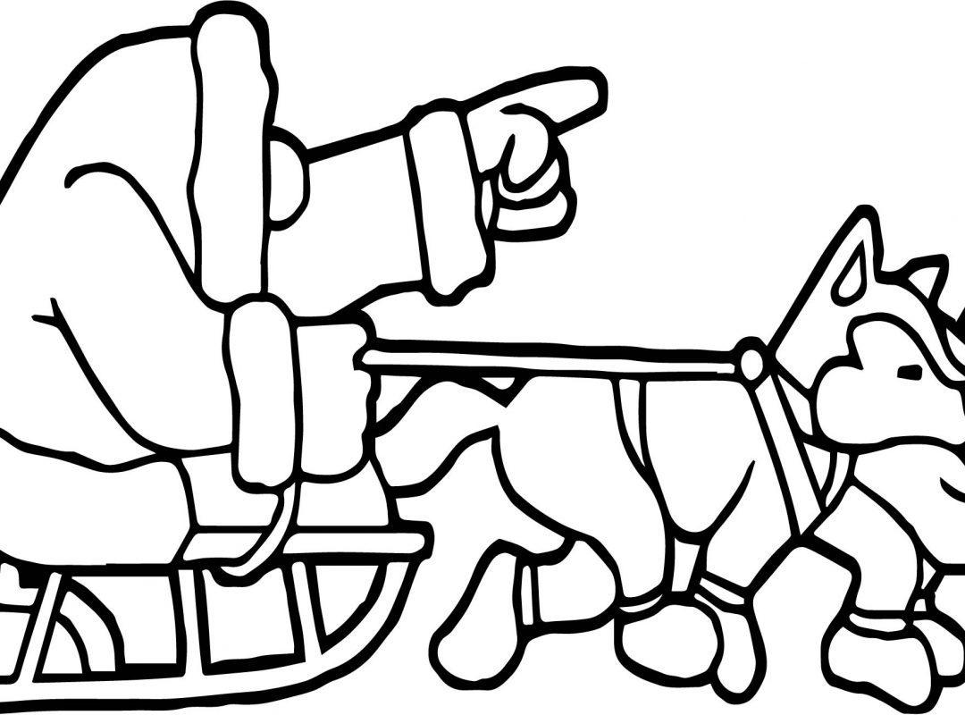 dog sled drawing - Google-søk | Dog sledding, Coloring pages, Dog ... | 800x1080
