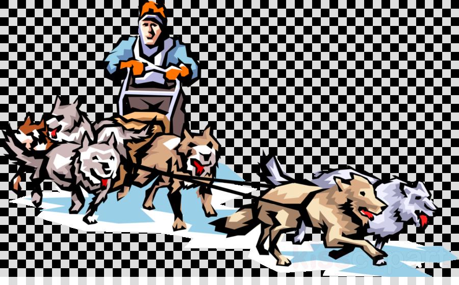 Alaska clipart iditarod. Siberian husky trail sled