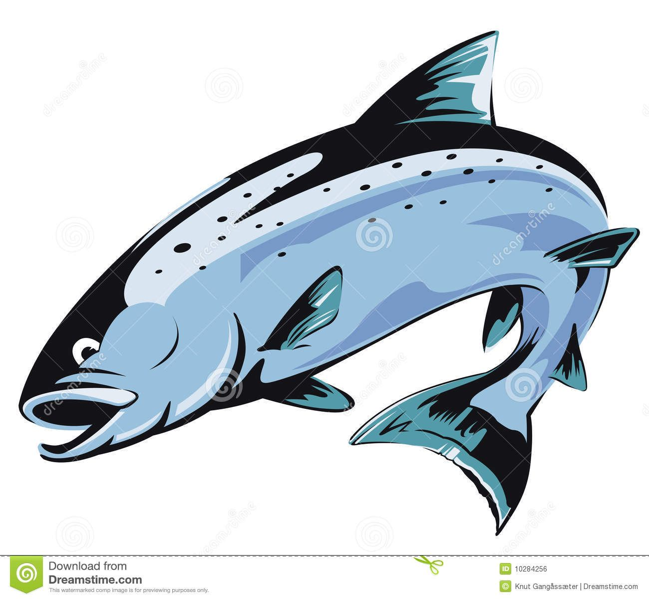 Cliparts going upstream ideas. Trout clipart salmon alaskan