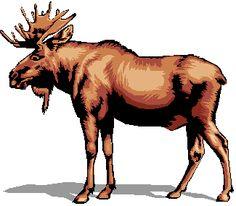 Alaska clipart moose alaska.  images about on