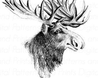 Alaska clipart sketch.  best clip art