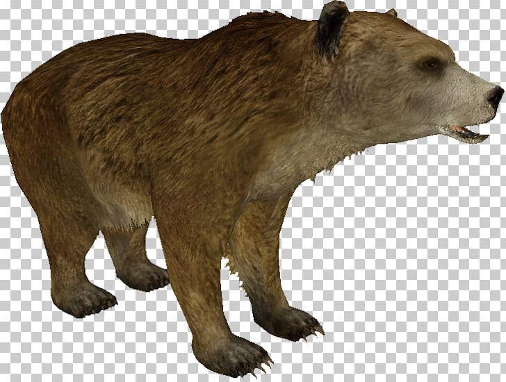 Mexican grizzly bear peninsula. Alaska clipart wildlife alaska