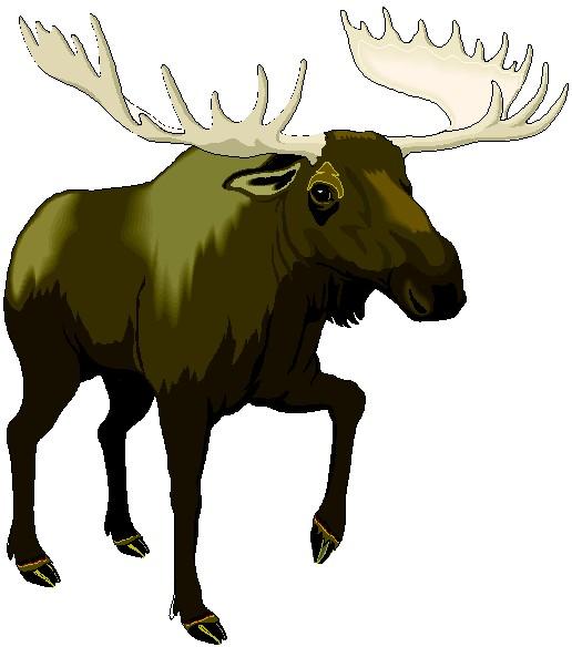 Moose clipart wildlife alaska. Alaskan panda free images