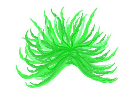 Free elephant grass download. Algae clipart algea