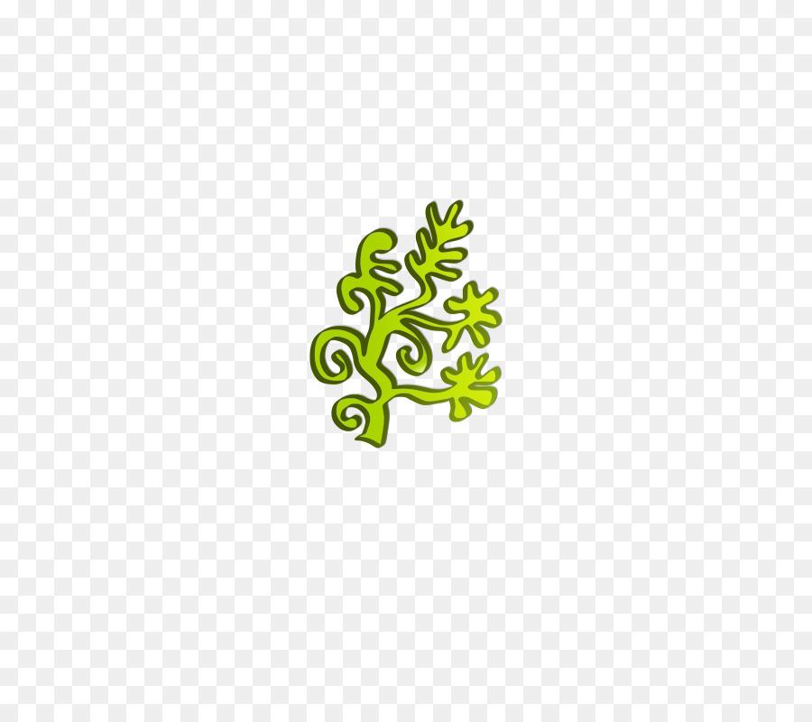 Green seaweed clip art. Algae clipart aquatic plant