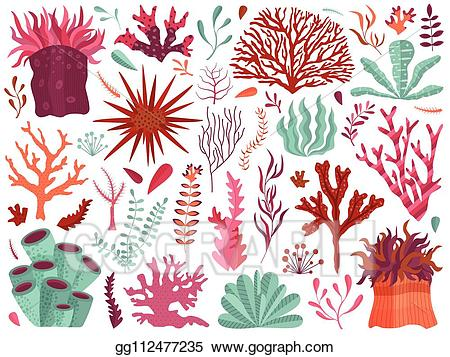 Vector stock underwater with. Algae clipart coral reef