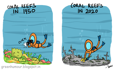 Algae clipart coral reef. Green humour the calamity