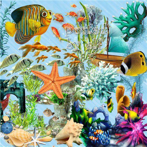 Summer sea png fish. Algae clipart coral reef