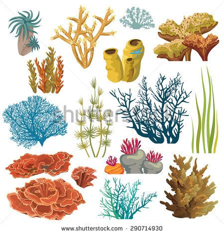 Algae clipart coral reef. Set of cartoon underwater