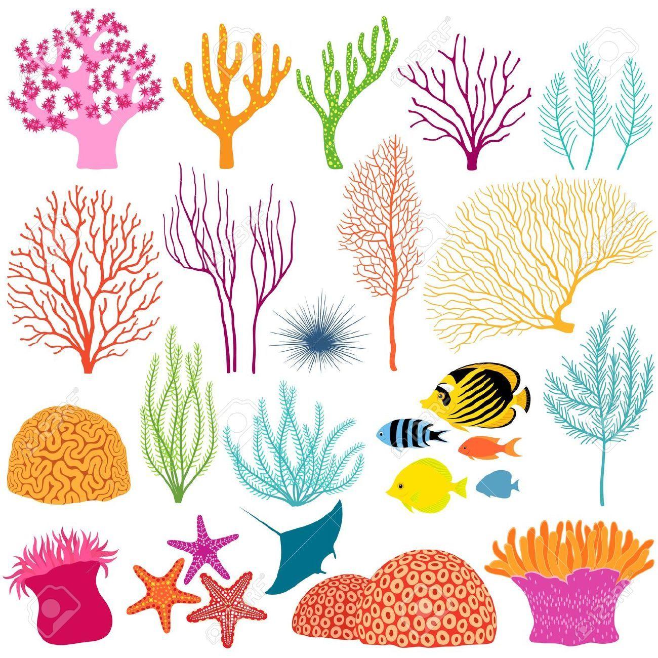 Underwater stock vector illustration. Algae clipart coral reef