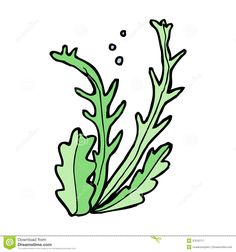 Cartoon google haku web. Algae clipart cute