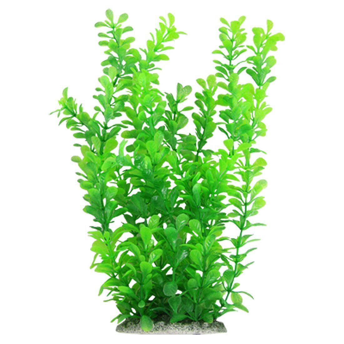 Aquarium clipart aquarium plant.  inch green fish