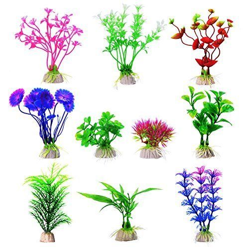 Mudder aquarium plastic plants. Algae clipart fish tank plant