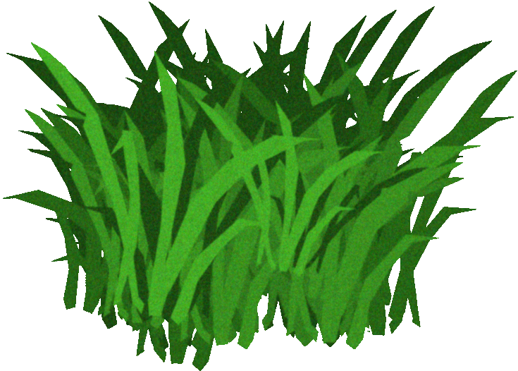 Sea png transparent images. Algae clipart giant kelp