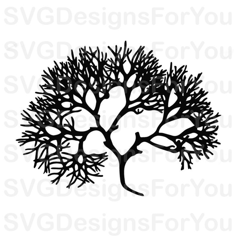 Algae clipart happy. Download for free png