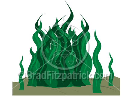 Cartoon seaweed picture royalty. Algae clipart kelp
