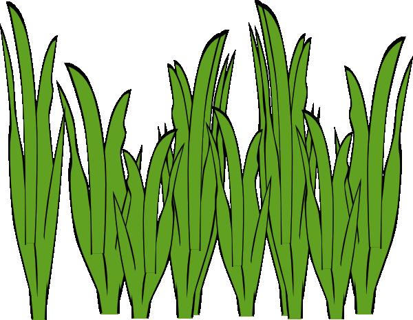 Seaweed ocean clip art. Algae clipart kelp
