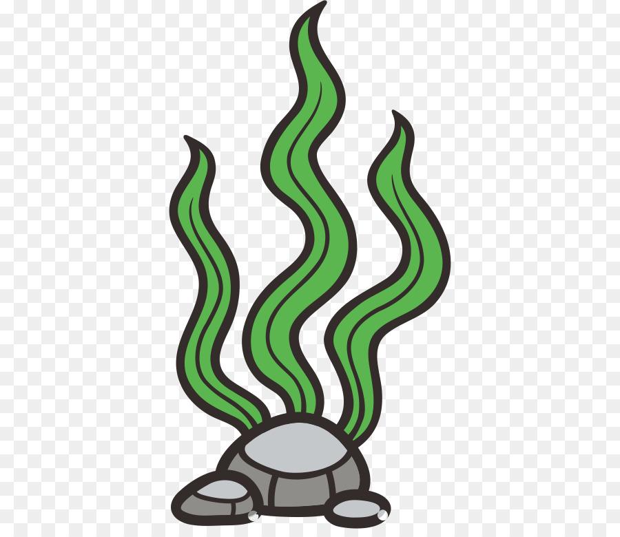 Cartoon seaweed png download. Algae clipart seagrass