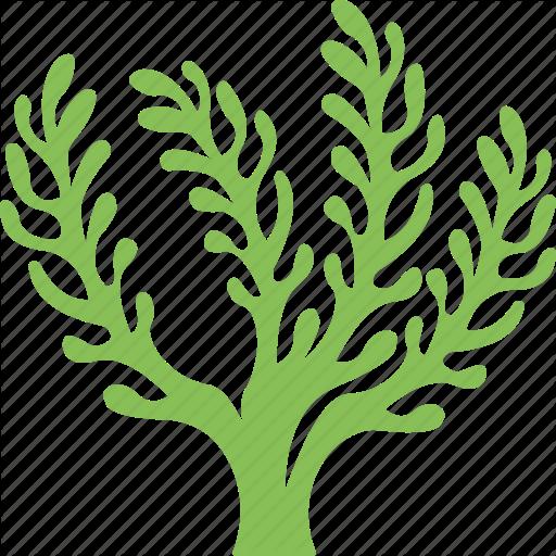 Green grass background sea. Algae clipart seaweed
