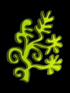 Panda free images algaeclipart. Algae clipart transparent background