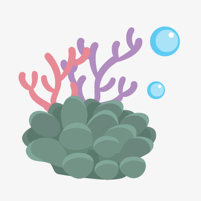 Undersea coral seabed the. Algae clipart under sea