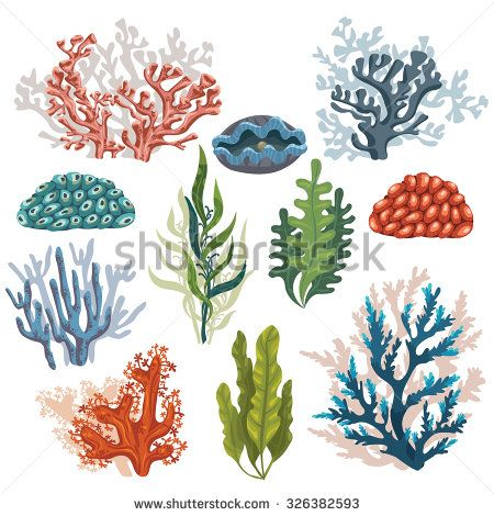 Set of cartoon plants. Algae clipart underwater plant