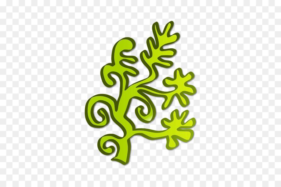 Algae Seaweed Aquatic plant Clip art