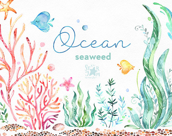Algae clipart water plant. Ocean seaweed underwater watercolor