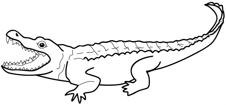 Silhouette at getdrawings com. Alligator clipart caiman