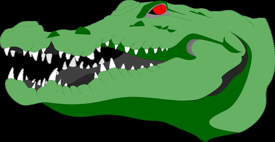 Clipart hippo alligator. Crocodile head
