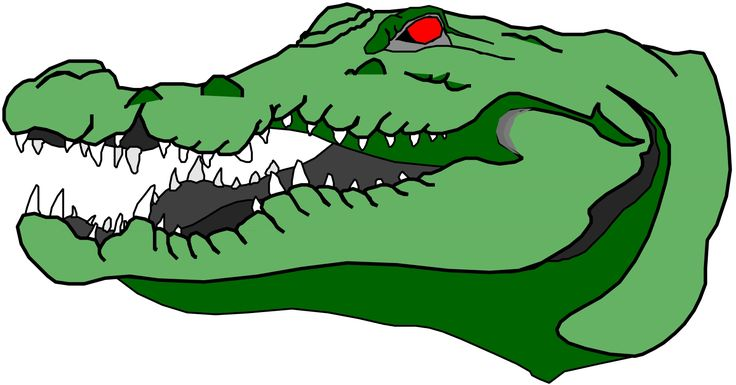 Alligator clipart open mouth.  best gator images