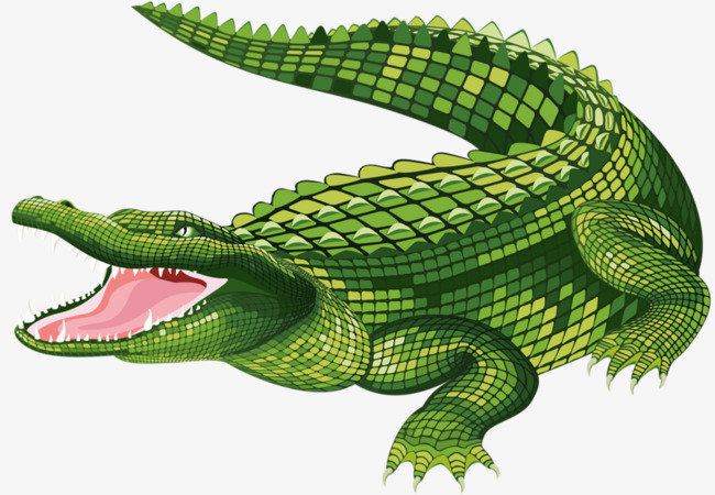 Alligator clipart saltwater crocodile. Mouth hand painted cartoon