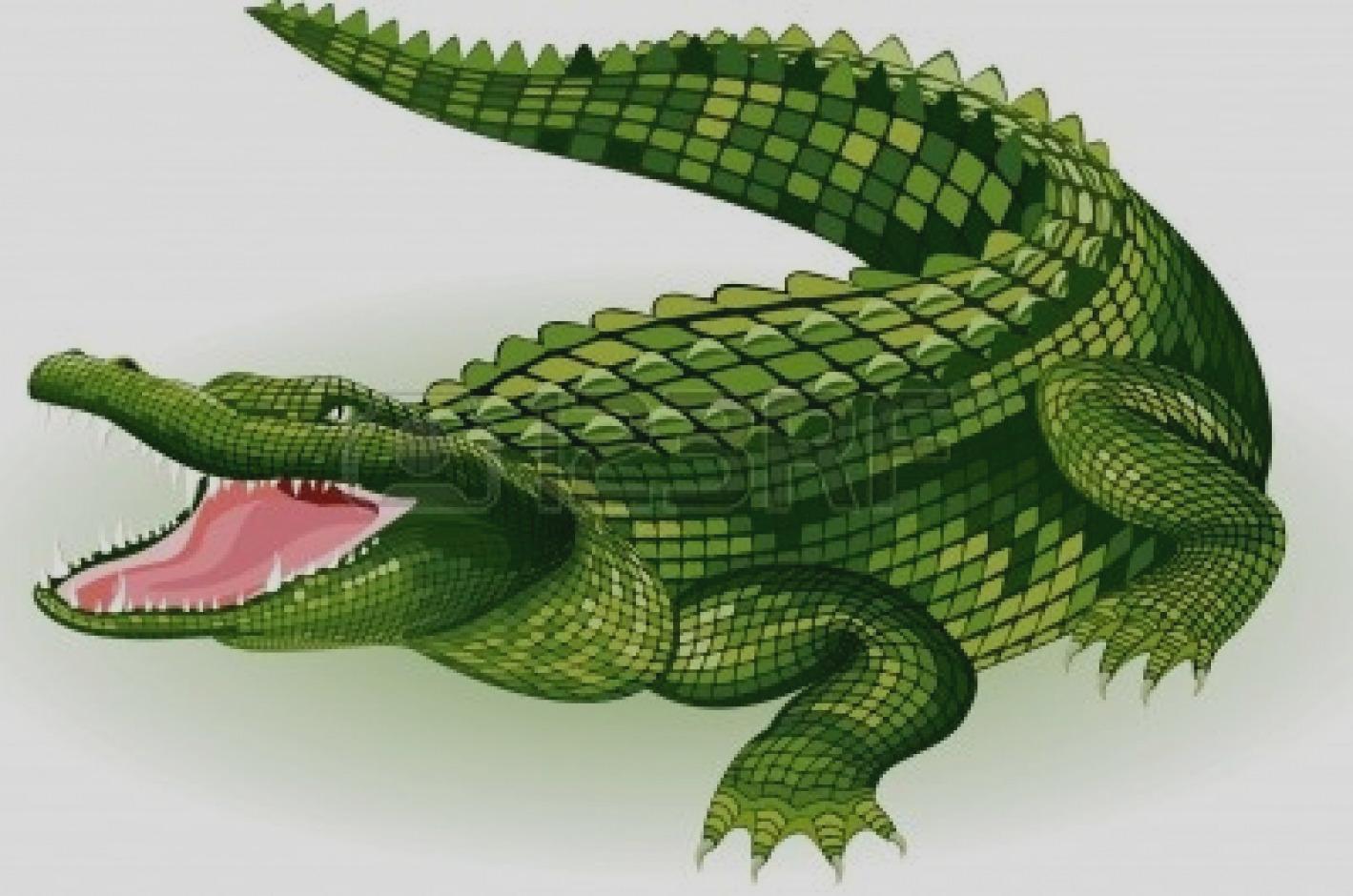Alligator scary