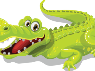 Images . Alligator clipart swimming