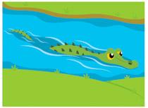 Clipart alligator. Free clip art pictures