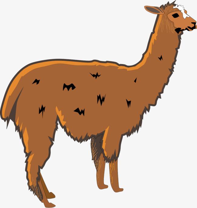Brown wool png image. Alpaca clipart