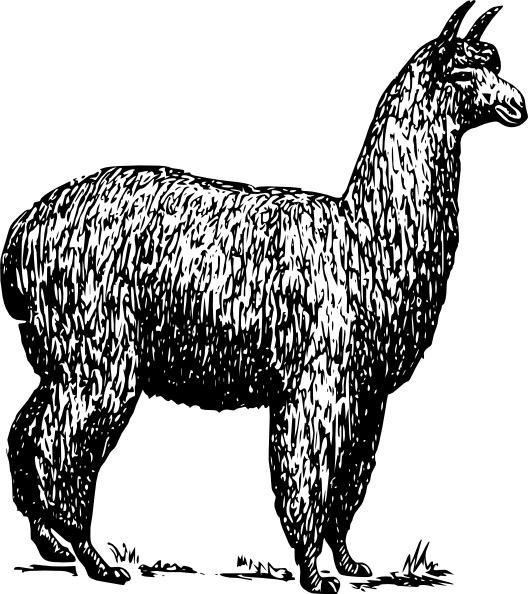 Clip art free vector. Alpaca clipart