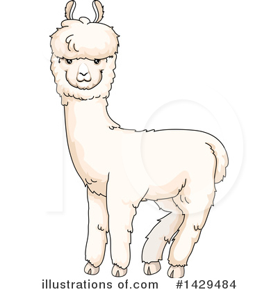 Illustration by bnp design. Alpaca clipart