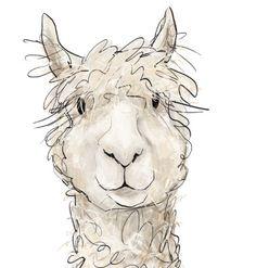 Llama watercolor painting animal. Alpaca clipart adorable