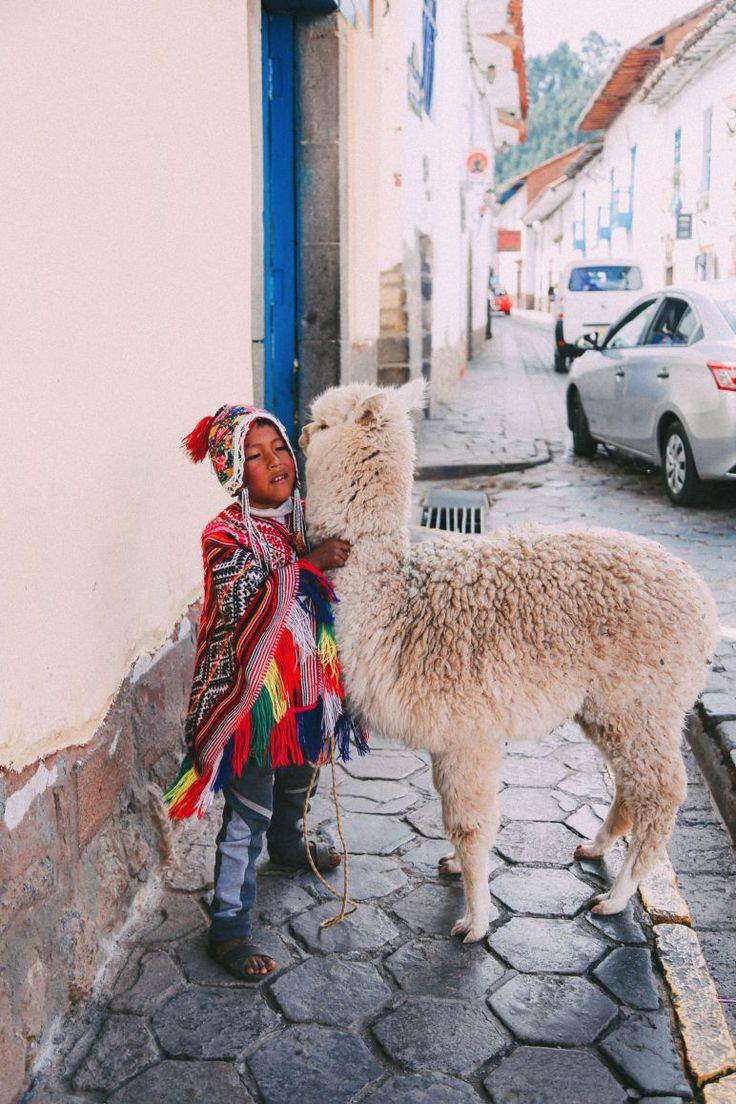 best llamas and. Alpaca clipart ancient inca