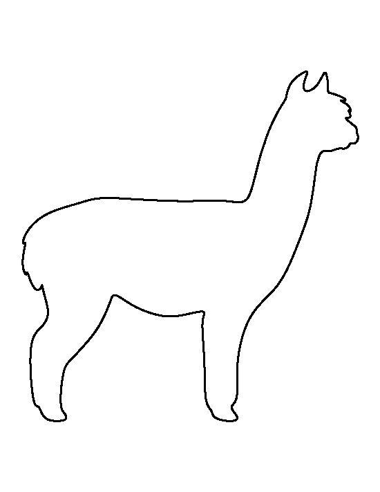 Alpaca clipart animal american.  best zooper safari