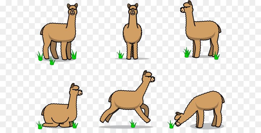 Stick figure png download. Alpaca clipart animal american