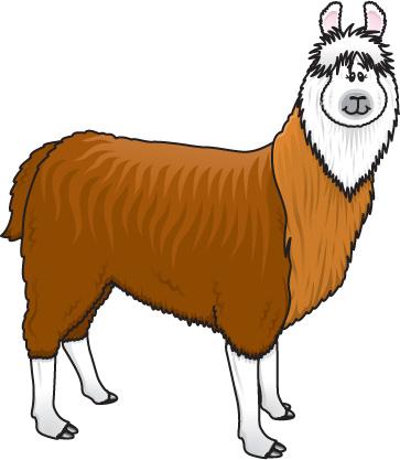 Free cliparts download . Alpaca clipart clip art