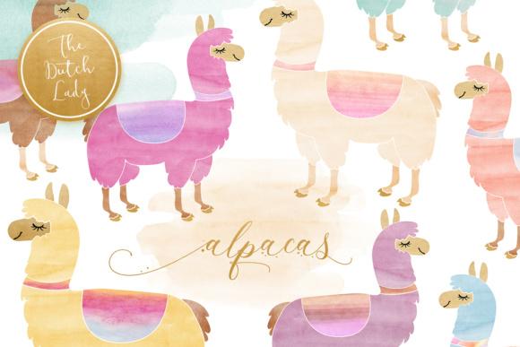 Watercolor . Alpaca clipart lama