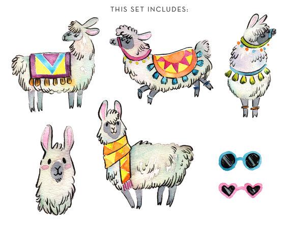 Alpaca clipart lama. Watercolor llama instant download