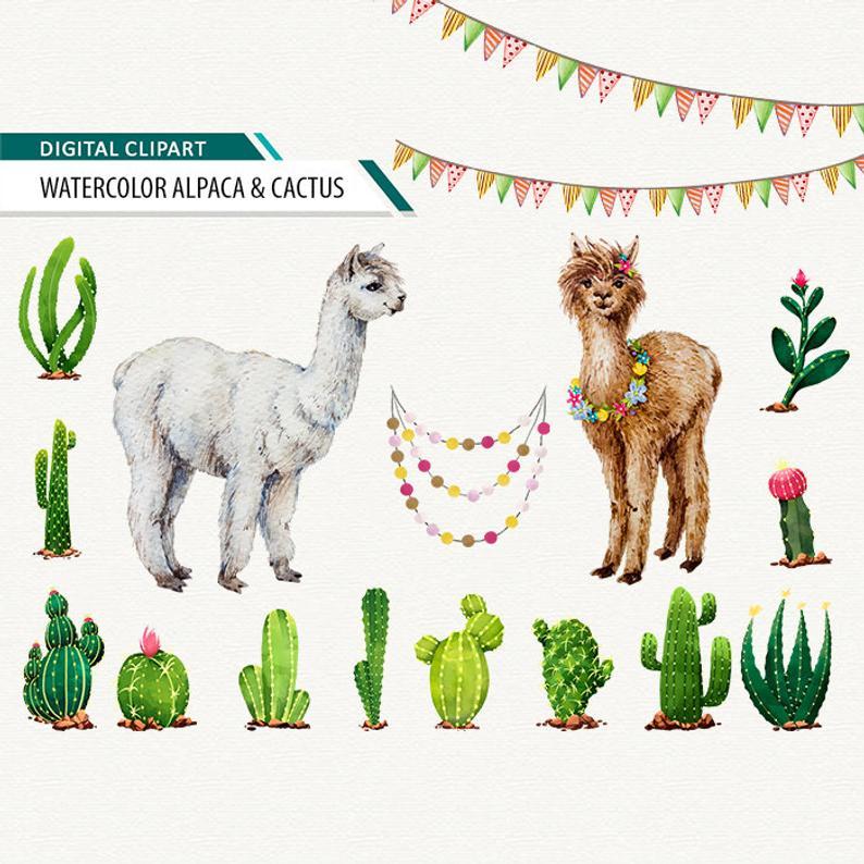 Alpaca clipart lama. Watercolor llama clip art